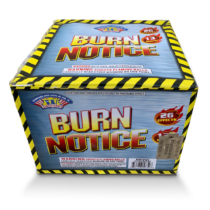 MrW_120_Burn-Notice_a